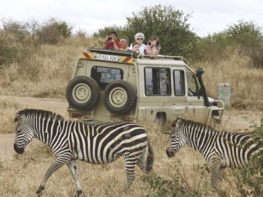 LuxeGetaways - Luxury Travel - Luxury Travel Magazine - Tauck Travel - BBC Earth - Family Travel - safari
