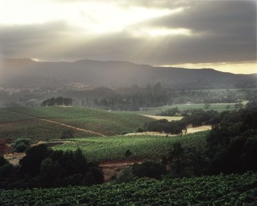 LuxeGetaways - Luxury Travel - Luxury Travel Magazine - Luxe Getaways - Luxury Lifestyle - California Wine Month - September 2017 - Wine Lovers - Wine Events - Wineries