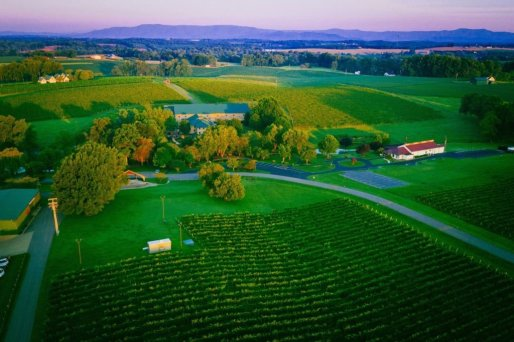 LuxeGetaways - Luxury Travel - Luxury Travel Magazine - Luxe Getaways - Luxury Lifestyle - North Carolina, NC, Winery, North Carolina Winery