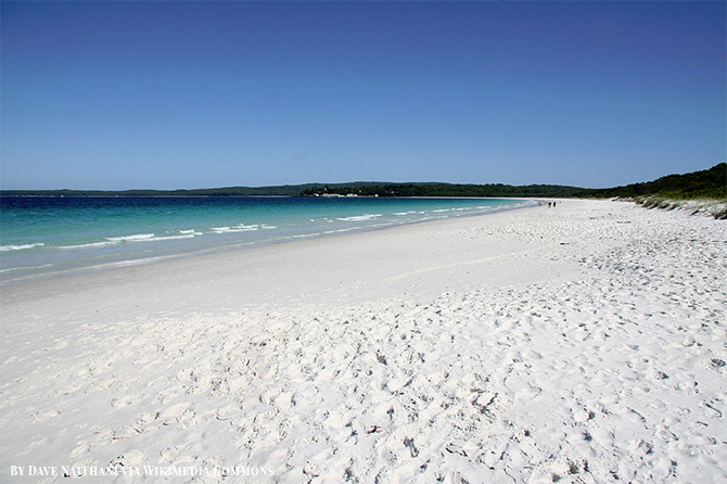 Stunning Beach Destination in Australia - Hyams Beach