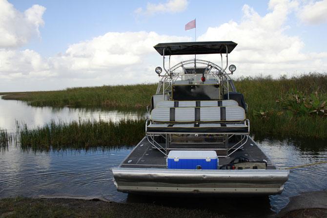 Everglades An Escape into Natures Wonderland 1