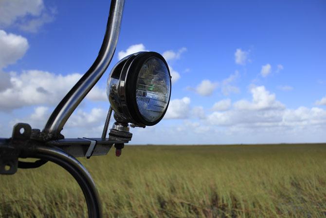 Everglades An Escape into Natures Wonderland 2
