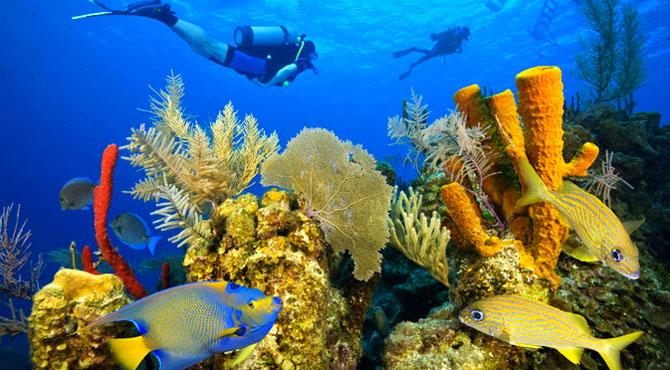 Hopkins Bay Belize Savor a Sense of Bliss 4
