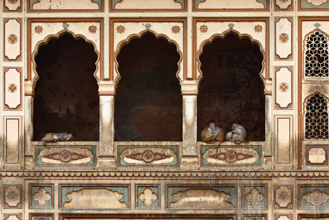 Jaipur The Pink City of India The Galta Monkey Temple