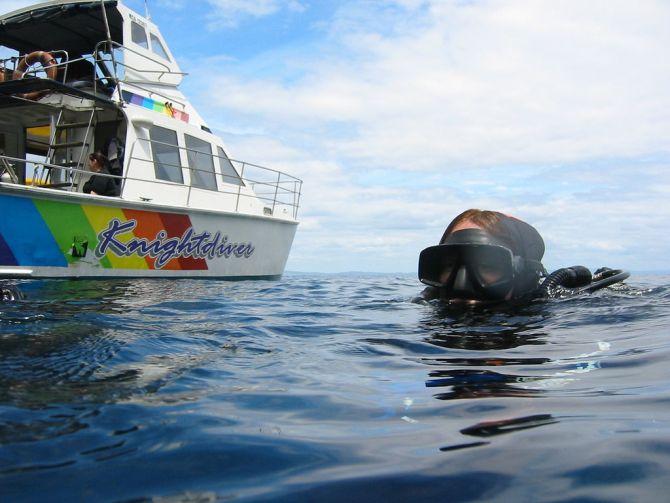 Scuba Diving in New Zealand Poor Knights Islands Reserve