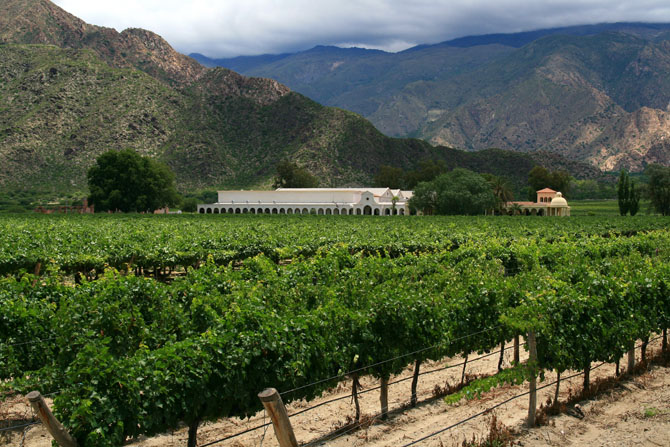 Top 10 Reasons to Escape to Argentina This Winter 8