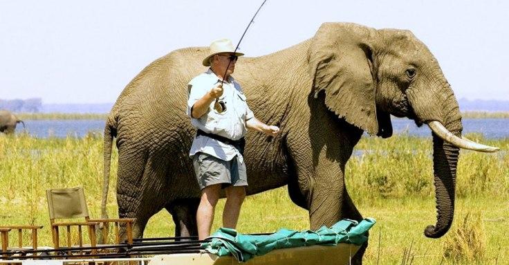 Chiawa Camp Safari - Courtesy of chiawa.com