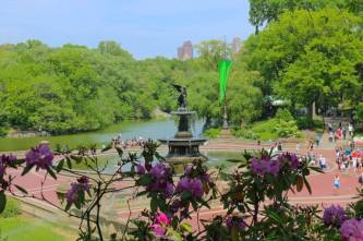 The Bethesda Fountain in Central Park