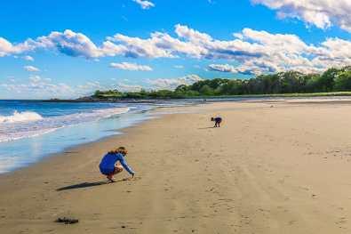 inn by the sea maine beach resort cape elizabeth
