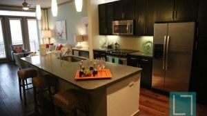 Kitchen Living Room at L2 Uptown Apartments in Uptown Dallas TX Lux Locators Dallas Apartment Locators