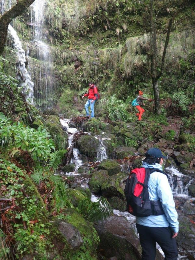 Madeira levada trails and madeira waterfalls in Caldeirão Verde Walk is one of our legendary travel and tours.