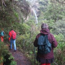 Madeira meaning is wood and it was named after the lush green forests. Caldeirão Verde Walk is one of the most beautiful levadas. Find levada map Madeira and stay safe.