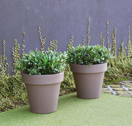new garden magnolia plant pot 26