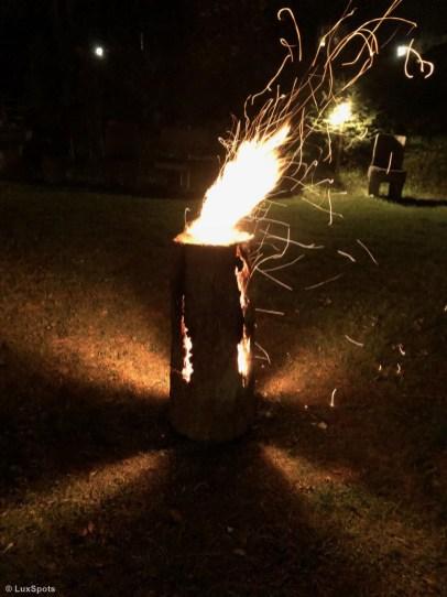 Brennender Baumstamm leuchtet Besuchern den Weg zum Gourmetfestival