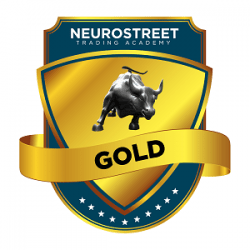 Package Tiers - NeuroStreet_FA-gold 300