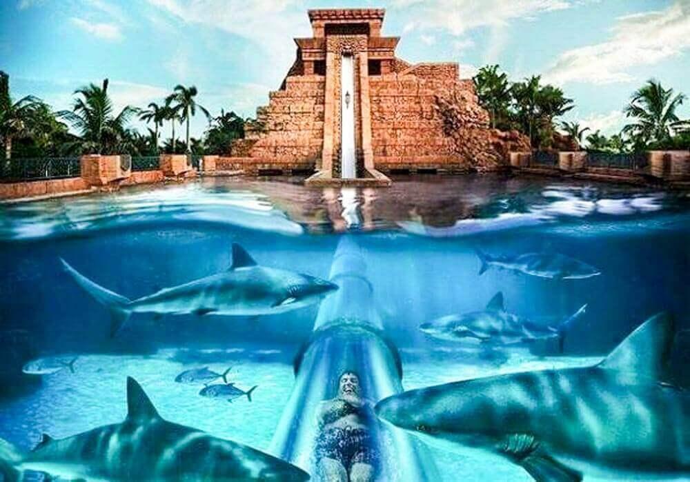 Atlantis Aquaventure - Luxuria Tours & Events