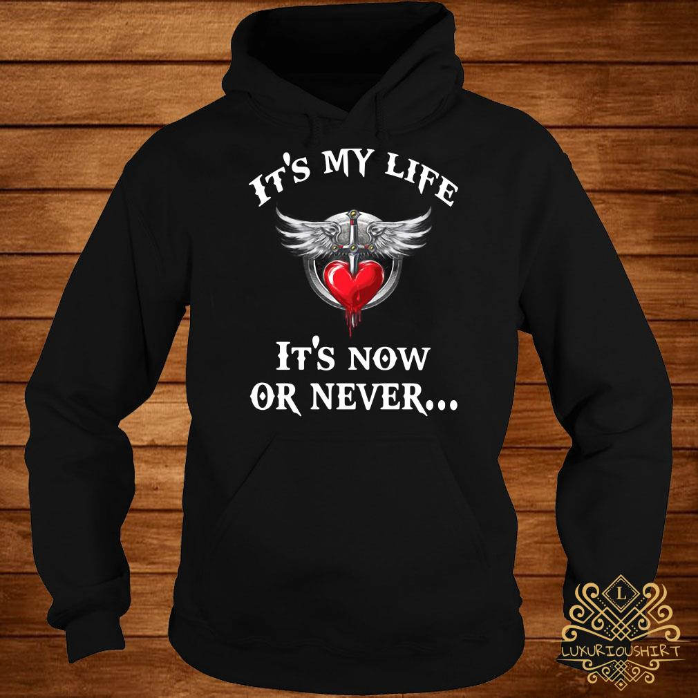 Bon Jovi it's my life it's now or never hoodie