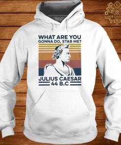 What Are You Gonna Do Stab Me Julius Caesar Shirt hoodie