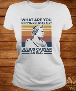 What Are You Gonna Do Stab Me Julius Caesar Shirt ladies-tee