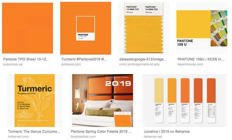 turmeric-yellow-2019-color-trends
