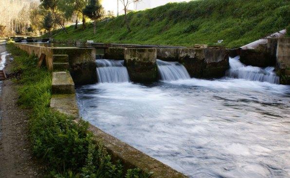 Riofrío er lykkedes med at yngle den spanske stør i fangeskab, takket være det rene vand fra bjergene omkring Granada og Malaga.