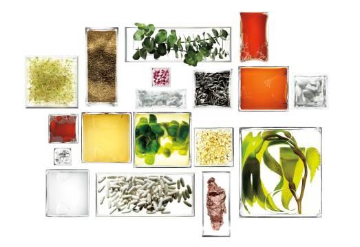 Ud over den særlige eliksir Miracle Broth, som er hjertet i La Mers luksuriøse produkter, er vitamin 12B, eukalyptus, magnesium, kobber og solsikkekerne på listen over ingredienser.