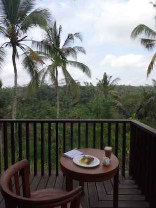 best-5-star-hotel-villa-ubud-alila-bali-luxury-bucket-list-blog-angela-carson-168