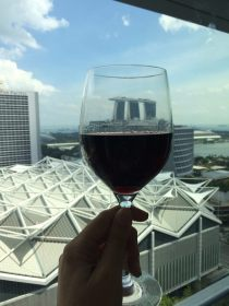jw-marriott-singapore-south-beach-video-tour-review-luxury-bucket-list-travel-blog-23