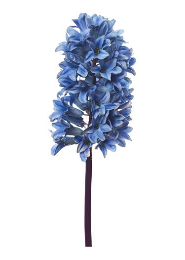 Neptune Hyacinth stem copy