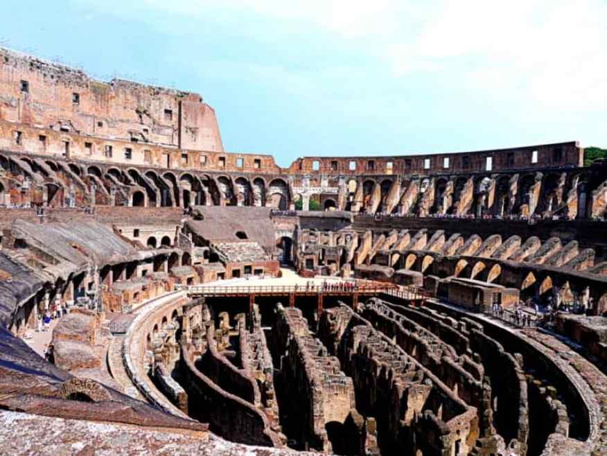 Colosseum Rome animals