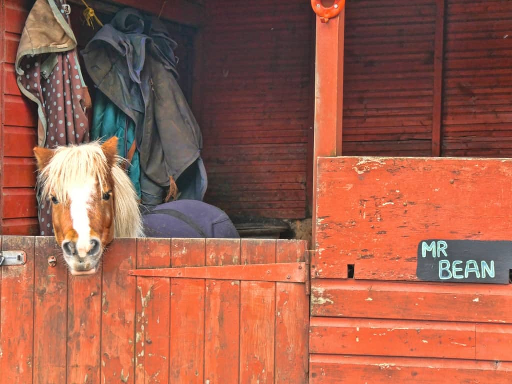 Burley Manor stables