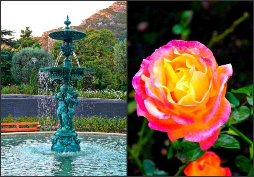 Princess Grace Rose Garden Monte-Carlo