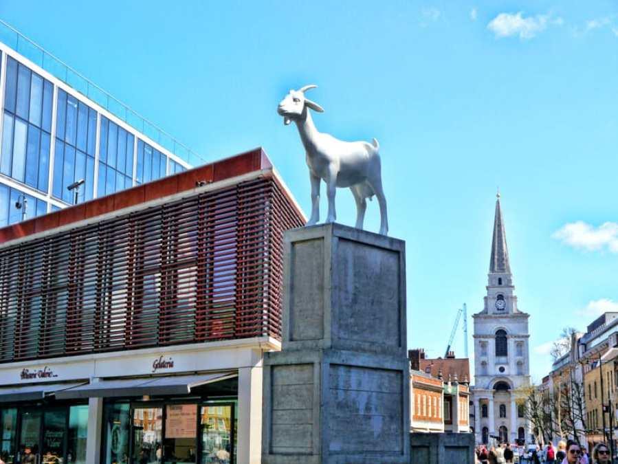 Ram of Spitalfields