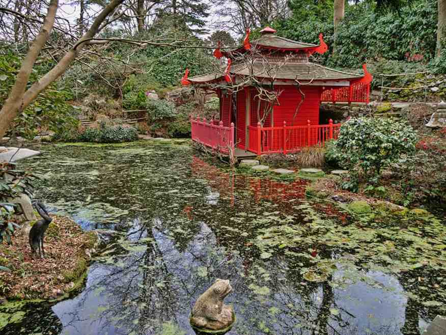 japanase-water-garden