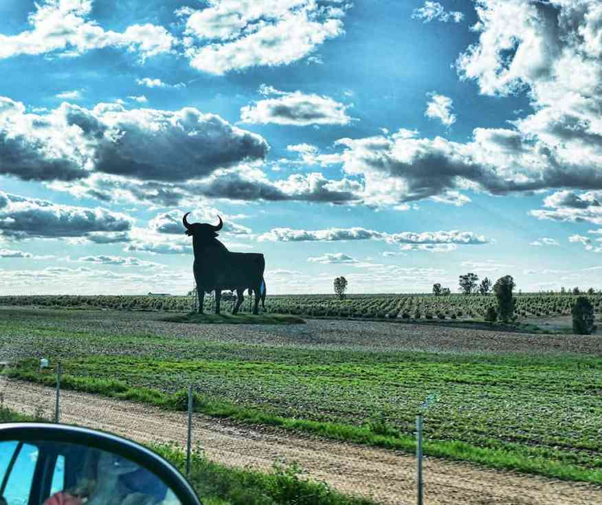 auto_europe_andalucia_road_trip_bull_sign