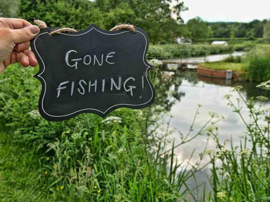 greyhound-on-the-test-fishing