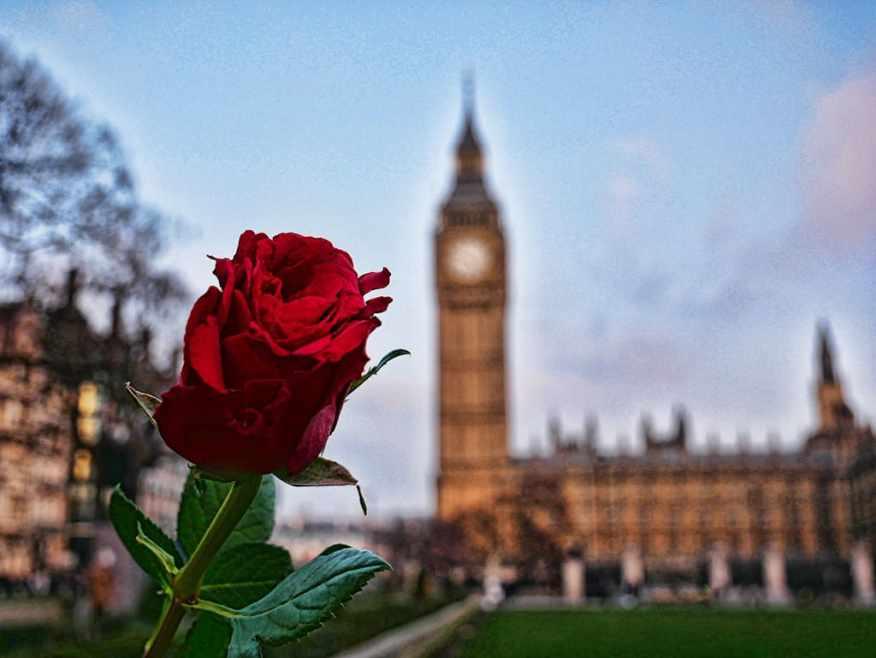 Valentine's Day Westminster
