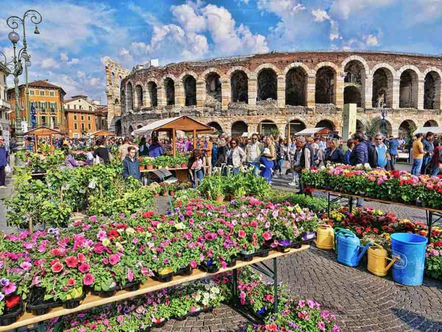Verona flower market