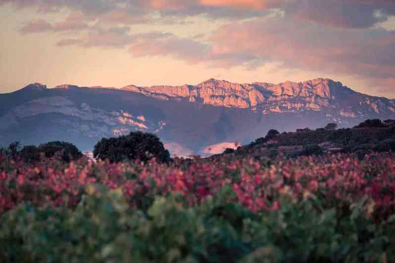 La Rioja mountain range
