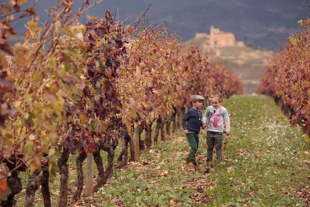 Vivanco winery in Rioja, Spain