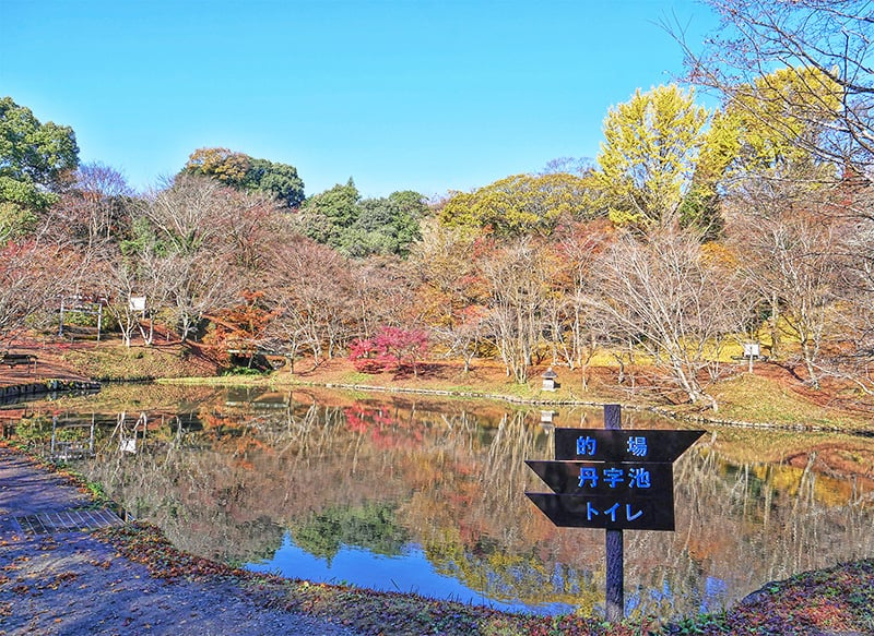 Oku-bungo olle hike in Fujitsu, Oita Japan