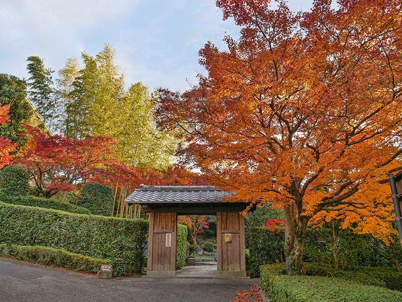 Kitsuki Castle Town, Oita Prefecture, Japan