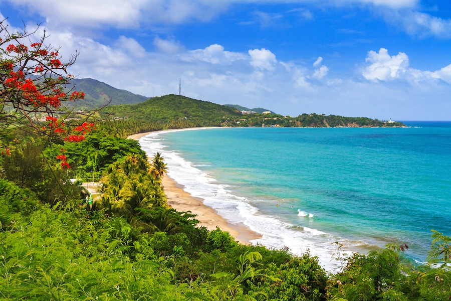 Puerto Rico's beaches and natural beauty are just a few hours from New York City by plane.