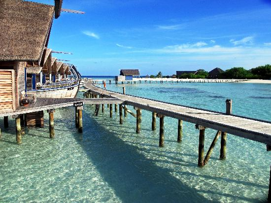6. Cocoa Island by COMO - Cocoa Island, South Male Atoll, Kaafu Atoll