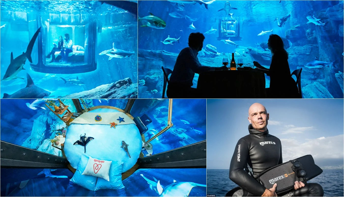 AirBnB Is Offering An Underwater Shark Suite In Paris