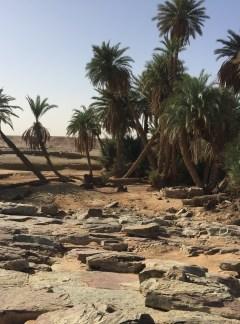 Raid 5 jours 4 nuits grand sud Maroc