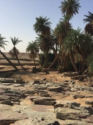 Raid quad 5 jours 4 nuits grand sud Maroc