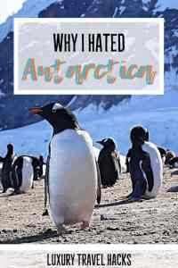 Why I Hated My Antarctica Holiday - Luxury Travel Hacks