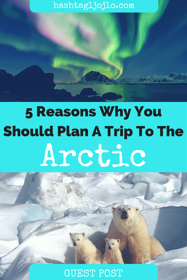 5 Reasons Why You Should Plan A Trip To The Arctic - The Traveller's Guide By #ljojlo