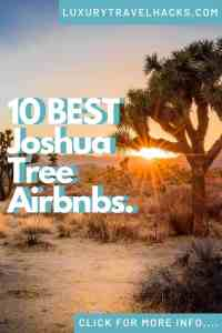 10 BEST Joshua Tree Airbnbs - Luxury Travel Hacks